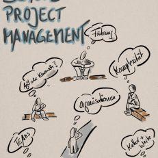 Beyond Project Management